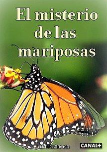El misterio de las mariposas | DVDrip | Mega